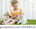 Little boy and corgi puppies 49308415