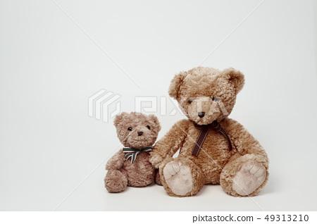 화이트 배경에 놓인 곰인형 49313210