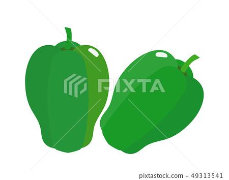 green pepper 49313541