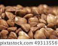 Grain buckwheat closeup 49313556