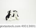 在白色背景的木偶玩偶 49313601