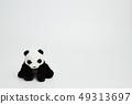 熊貓坐白色背景 49313697