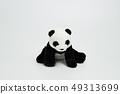 熊貓坐白色背景 49313699