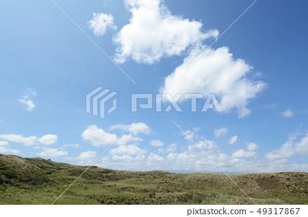 미국 하와이 목장 풍경 49317867