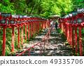 Fresh green Kyoto Kifune Shrine 49335706