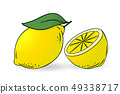 lemon and half of lemon 49338717