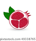 Vector hand drawn pomegranate. 49338765