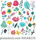 Summer flat flowers. Floral garden flowering plants, nature floral elements. Spring botanical vector 49348235