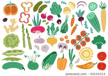 Color vegetables. Tomato zucchini potatoes champignon garlic radish. Vegan healthy meal organic food 49348324