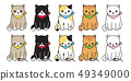 고양이, 그림, 그리다 49349000