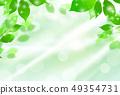 新綠色淺綠色的背景 49354731