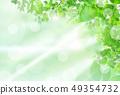 新綠色淺綠色的背景 49354732