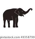 Indian elephant 49358799