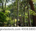 Nanzen Temple grounds with fresh greenery 49363893