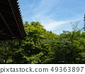 Nanzen Temple grounds with fresh greenery 49363897