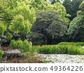 Kyoto Yamashinan Shuji Temple with fresh greenery 49364226