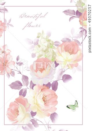 色彩豐富的花卉,優雅玫瑰素材 49370257