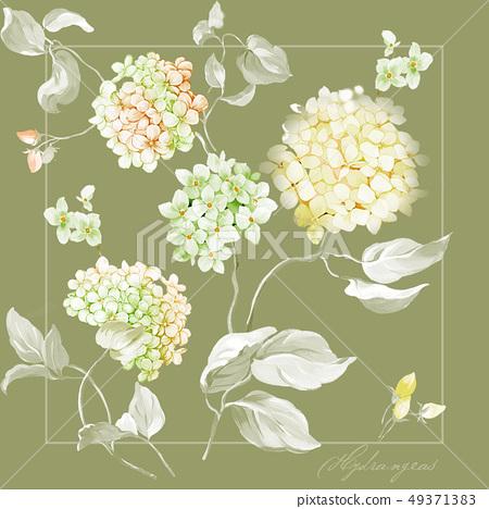 美麗的繡球花和手繪水彩花 49371383