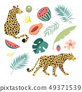 Summer tropical graphic elements. Leopard cats animals. Jungle floral illustrations, palm, monstera 49371539