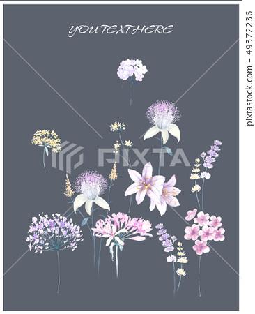 優雅的手繪水彩花卉圖案 49372236