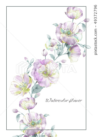 手繪盛開的花朵 49372796