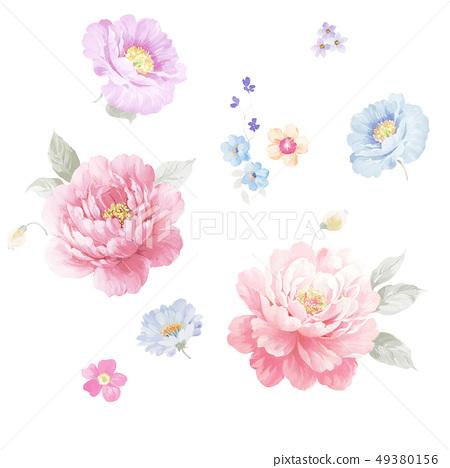 漂亮的水彩牡丹花卉 49380156