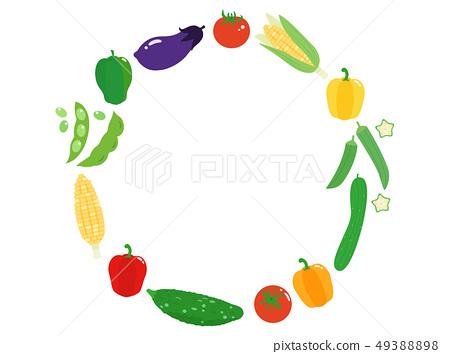 夏季蔬菜3幀 49388898