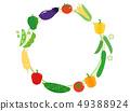 夏季蔬菜4幀 49388924