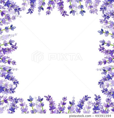 라벤더 꽃 프레임입니다.- 웨딩,광고,표지 49391394
