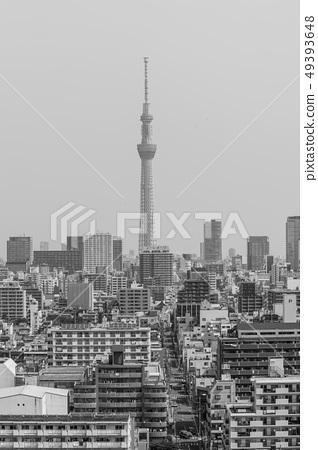 東京的鳥瞰圖,摩天大樓,鳥瞰圖[東京天空樹]黑白照片,單調 49393648