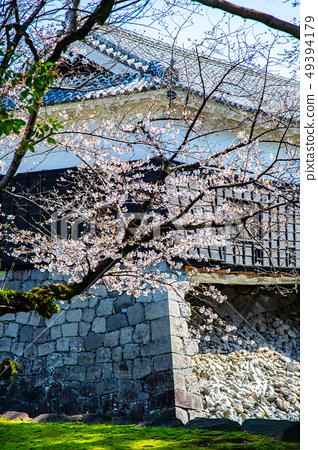 日本熊本城櫻花Asian, japanese, kumamoto cherry blossom 49394179