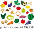 Vegan Vegetarian 49394958
