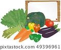 傳染媒介例證菜nanban gyoza蕃茄紅蘿蔔胡椒胡椒辣椒粉蘆筍菠菜板 49396961