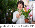 Customer choosing bromelia 49402395