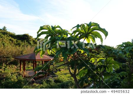 예래생태공원,공원,산책, 49405632