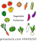 Vegetable illustration collection 49409265