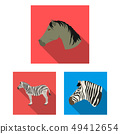 Vector illustration of trot and running icon. Set of trot and clipart stock symbol for web. 49412654