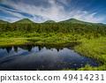 Aomori Prefecture Hakkoda summer 49414231