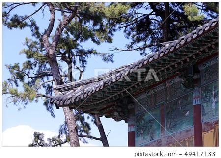 한국적 사찰분위기 이미지 49417133