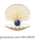 Vector seashell with pearl 49418836