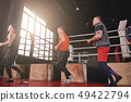 boxer, run, running 49422794