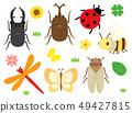 昆蟲設置昆蟲 49427815