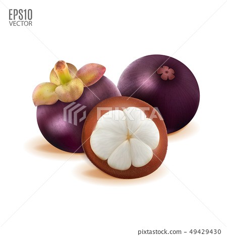 Tropical mangosteen isolated on white background. Whole and cut half piece for package design 49429430