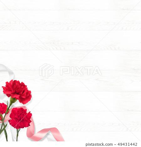 배경 - 카네이션 - 어머니 날 - 시라 49431442