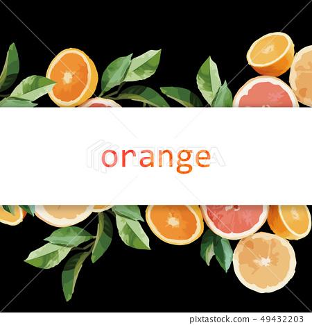 橙子和葉子插畫 49432203