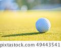 高爾夫球場綠色和球 49443541