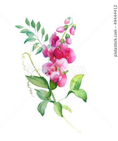 色彩清雅的水彩花卉和葉子 49444412