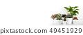 Houseplants in modern flowerpots 49451929