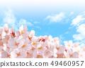 벚꽃 04 49460957