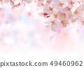 벚꽃 03 49460962